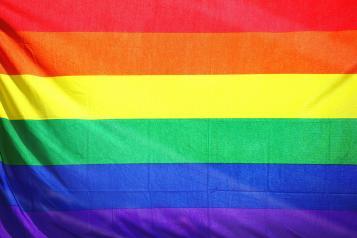 rainbow lgbt+ flag pride